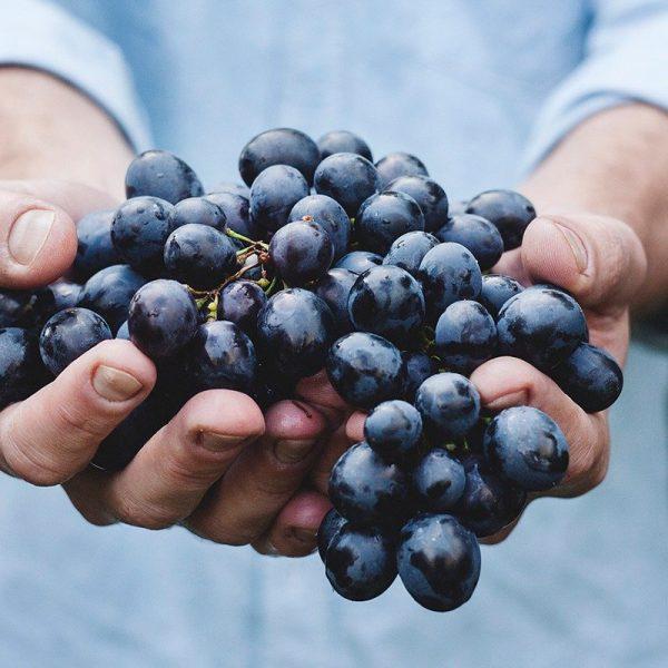 Uvas rojas (Supertomate - Tienda online)